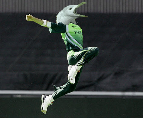 What if Umar Gul was a gull?